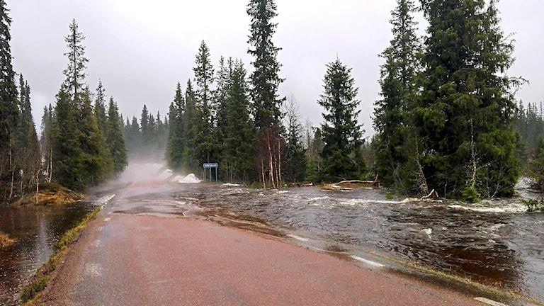 Vatten på asfaltväg.