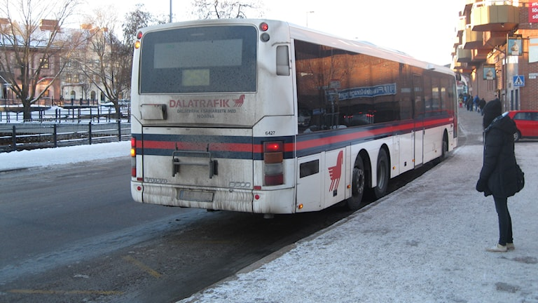 Många struntar i säkerhetsbälte på bussen