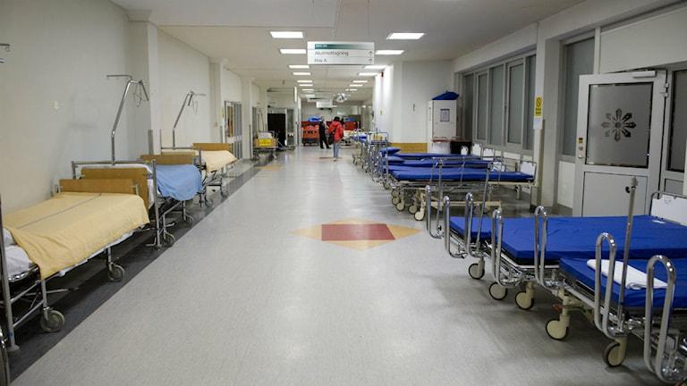 En tom sjukhuskorridor med sjukhussängar längs väggarna.