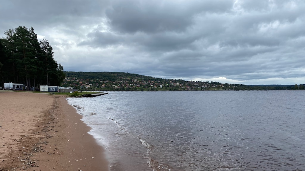 en strand och en sjö