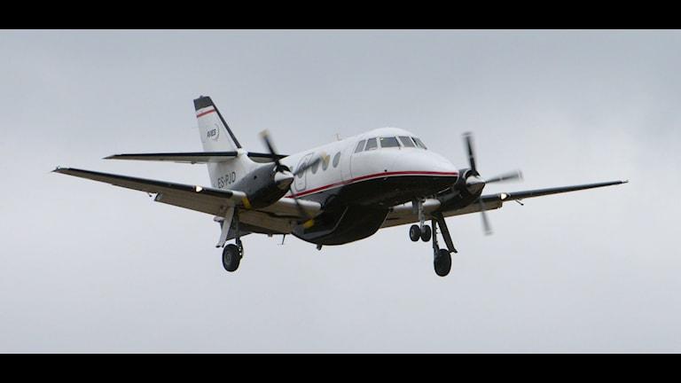 Ett Avies flygplan. Foto: Johan Nilsson/TT.