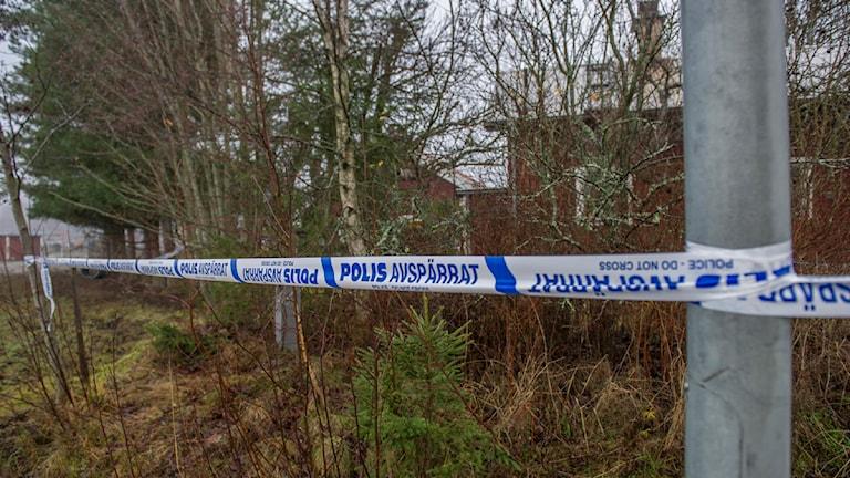 Kvinna hittades död i Skogsbo. Foto: Niklas Hagman.