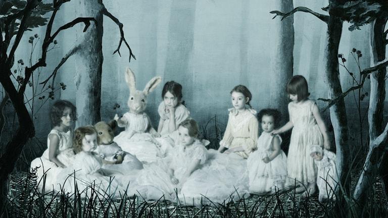 Group portrait in forest. Foto: Helena Blomqvist.