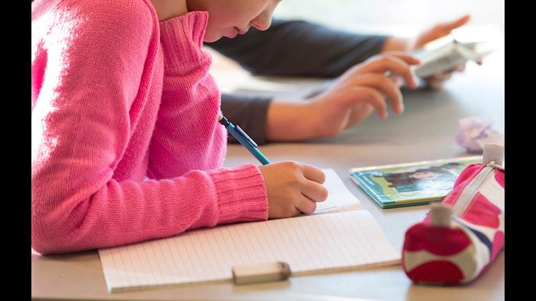 Skoleleven på bilden har inget med texten att göra. Foto: Fredrik Sandberg/TT