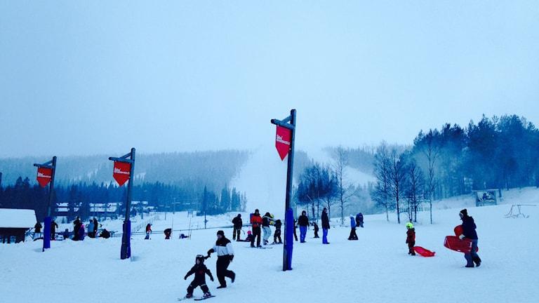 Barn som åker skidor och pulka i Lindvallen Sälen.