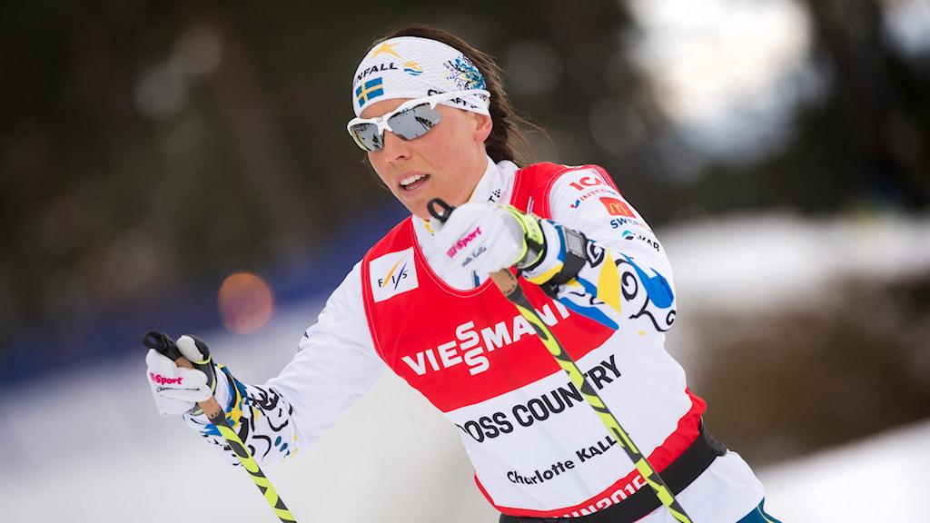 Charlotte Kalla tränar i spåren under skid-VM i Falun 2015 Foto: Fredrik Sandberg / TT