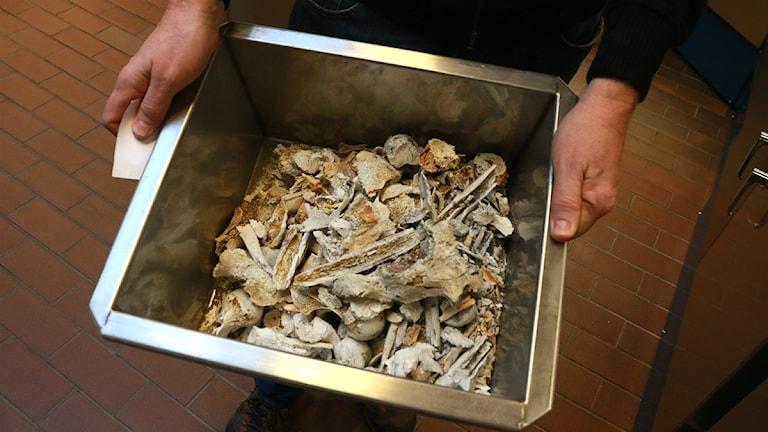 Krematorium. FOTO: Sofie Lind/Sveriges Radio.