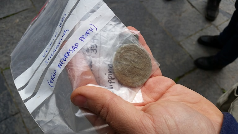 Några av mynten man hittat i samband med utgrävningarna.