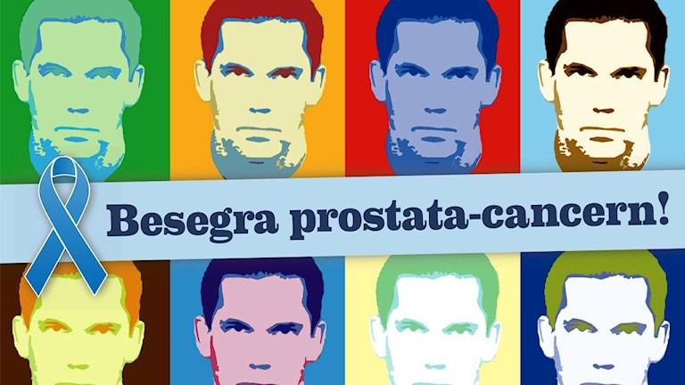 prostatacancerförbundet.