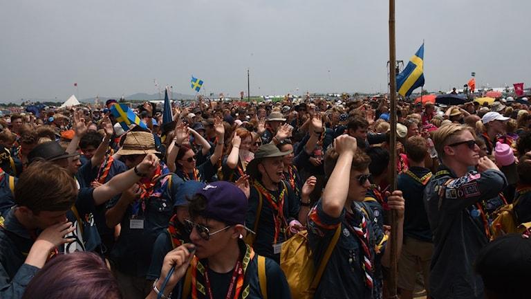 Scoutläger i Japan