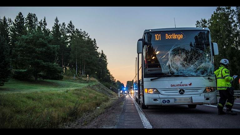 bussolycka med älg