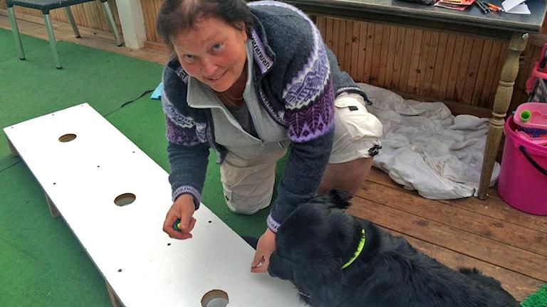 Inger Larsson visar hur man tränar sin hund att hitta svamp