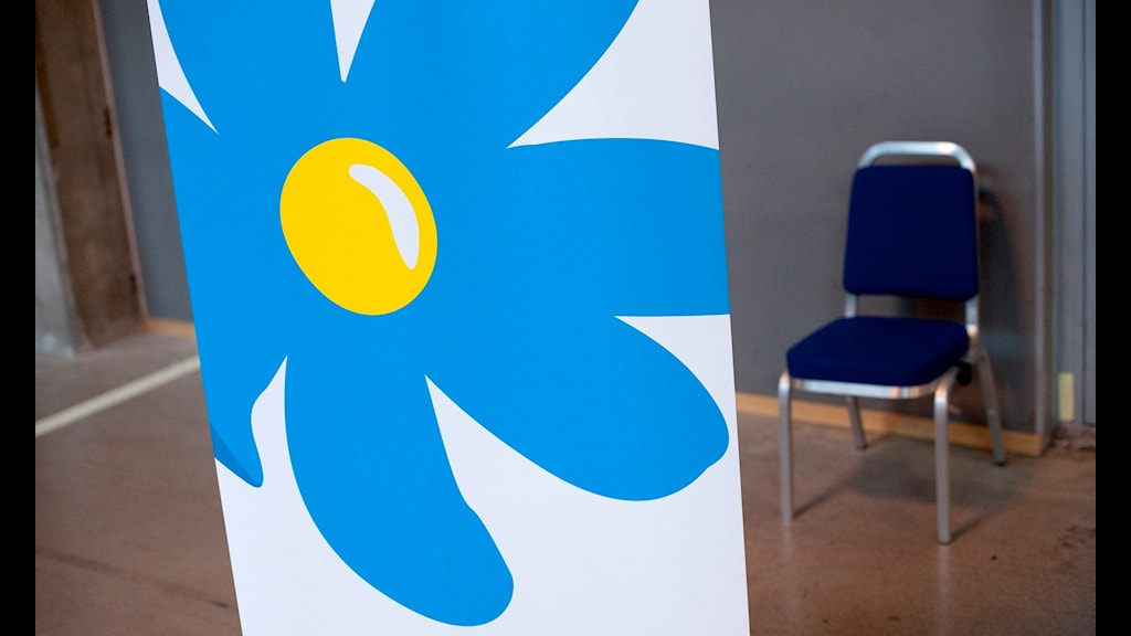 Sverigedemokraternas symbol, blåsippa, och en tom stol.