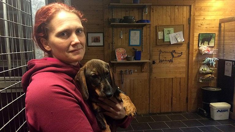 Johanna Janols Rengeborg driver ett hundpensionat