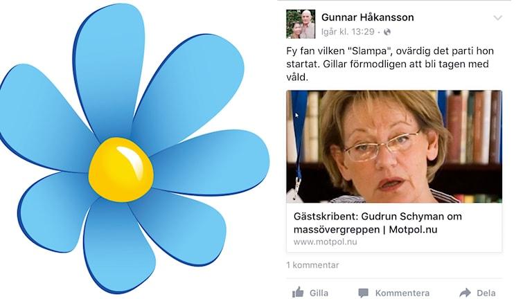 Gudrun Schyman kallades slampa av SD-politiker i Orsa