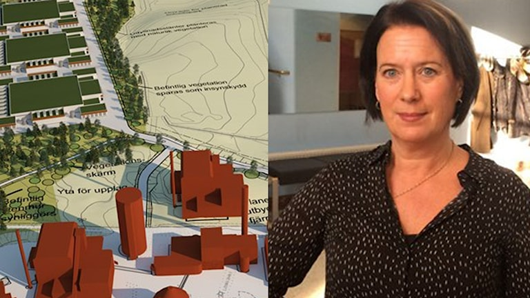 Eco Datacenter och Susanne Norberg