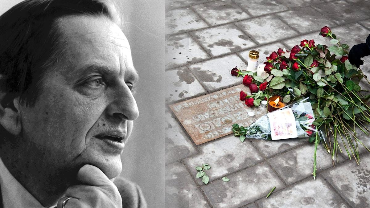 Olof Palme och mordplatsen