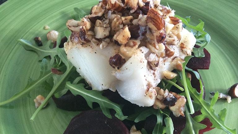 Hasselnötsbakad torskfilé med rödbetor och ruccolasallad