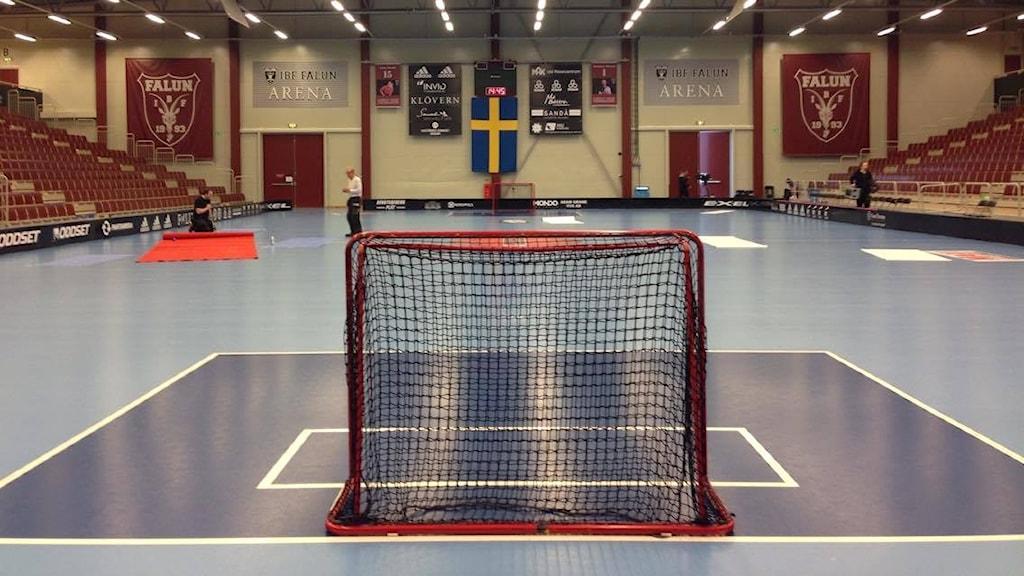 IBF Falun Arena