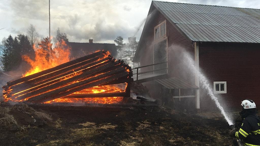 Branden riskerade att spridas till en ladugård och två villor.