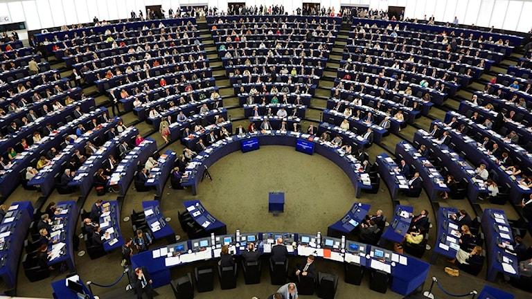 Politiker kan alldeles för lite om EU enligt en regeríngens utredare. Lokala politiker håller med.