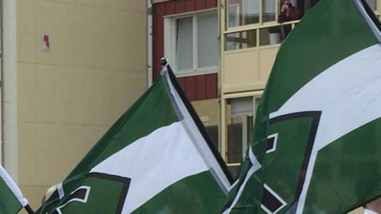 Nordiska motståndsrörelsens flagga