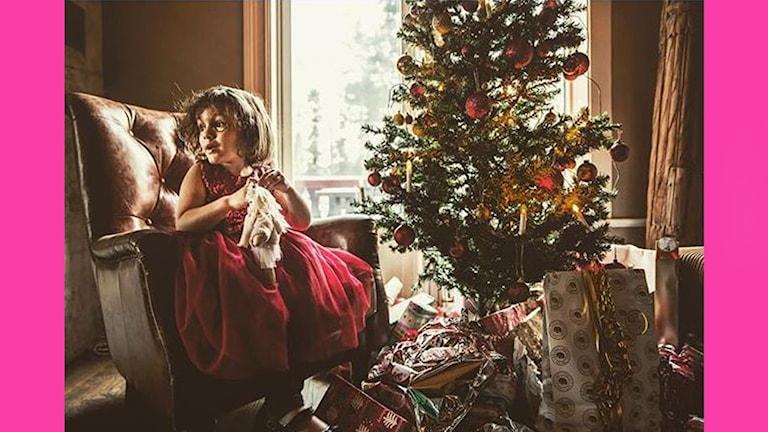 Bild med julgran