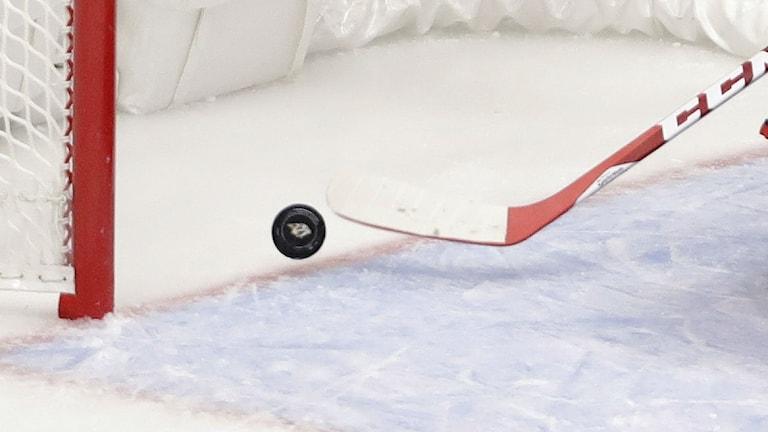 ishockey genrebild