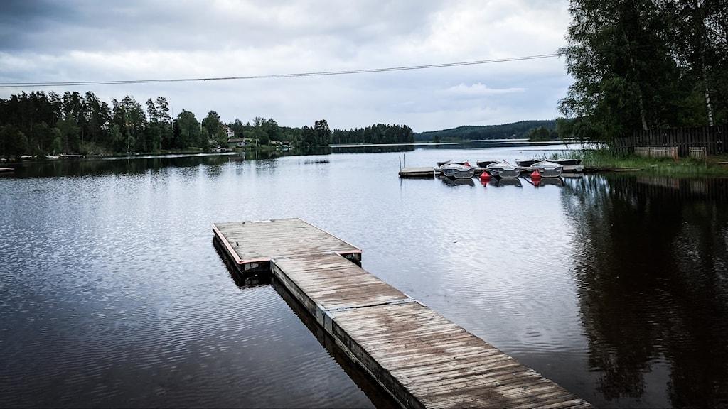 En träbrygga ut i en sjö med skog på sidorna.