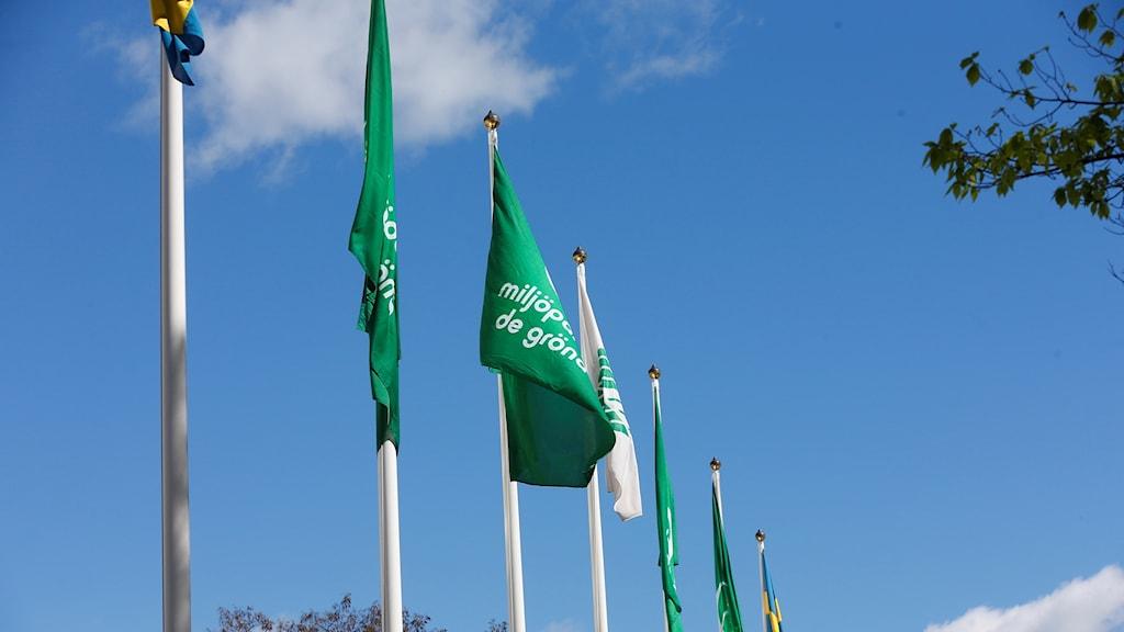 Flaggor utanför Miljöpartiets kongress 2017.