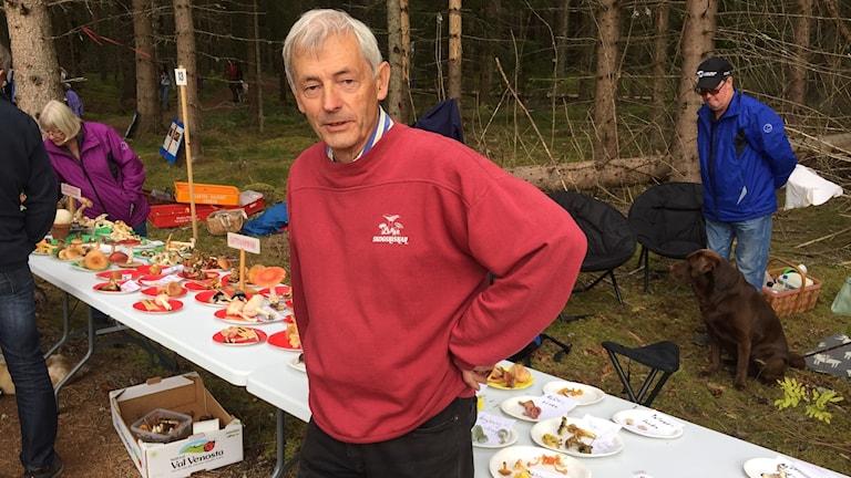 En man står med händerna i sidorna vid ett bord fullt med uppdukad svamp och med skogen i bakgrunden.