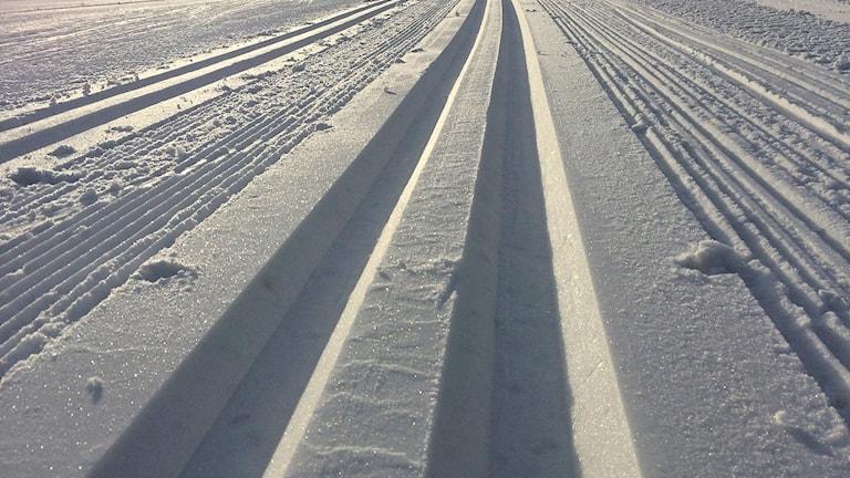 Preparerade längdskidspår på Lugnets skidstadion i Falun.