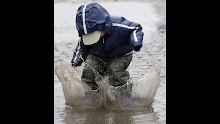 Snart kan det vara tillfälle att plaska i regnet, för 25 och 35 millimeter väntas komma under kvällen och natten uppger SMHI. Foto: Leif R Jansson/Scanpix.