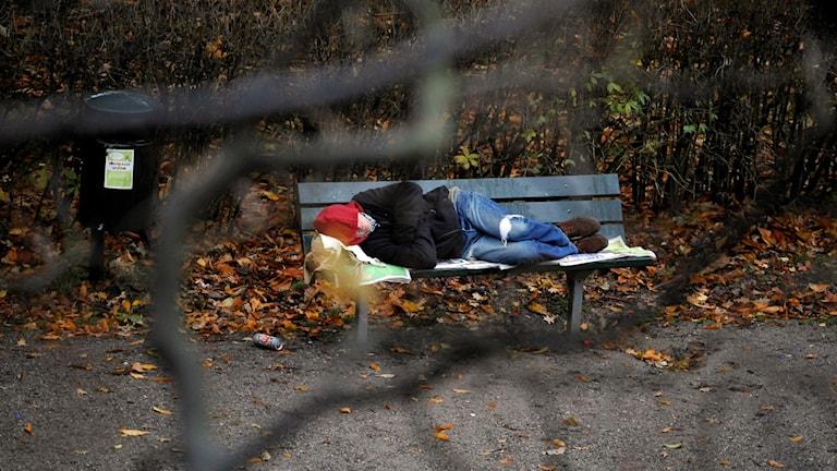 En person ligger och sover på en parkbänk.