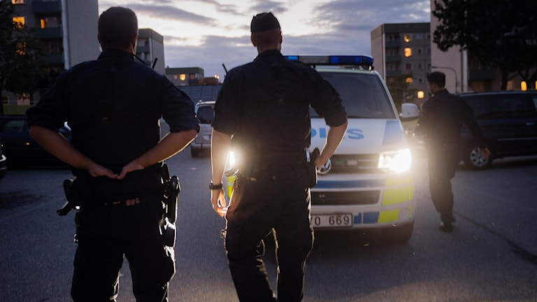 Flera poliser