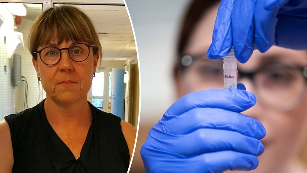 Helena Ernlund, biträdande smittskyddsläkare i Region Dalarna, och händer som håller i ett provrör.