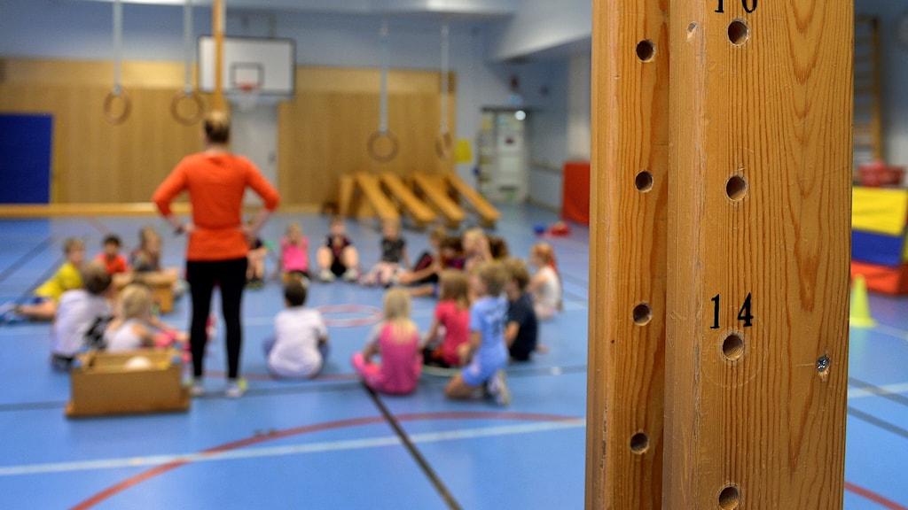 Barn i en gymnastiksal