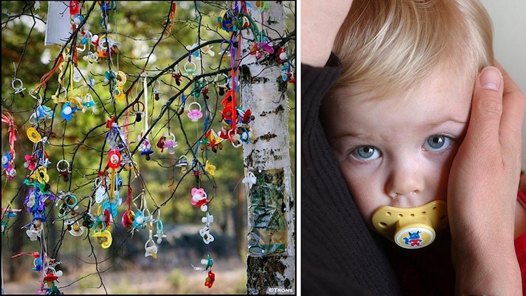 Bild på träd med nappar samt bild på barn med napp.