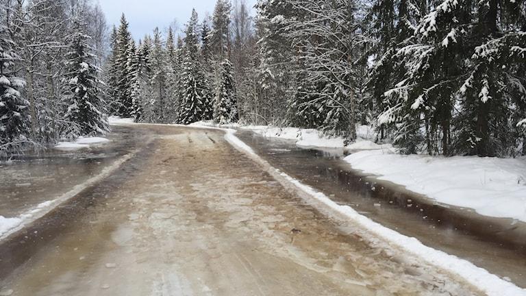 En skogsväg i Malung-Sälen till bredden fylld av is och snömodd.
