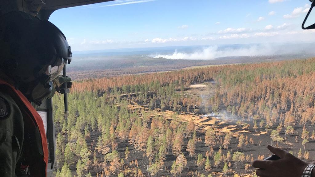 Försvarsmakten flyger över området där man släppte en bomb i samband med skogsbranden i Trängslet.