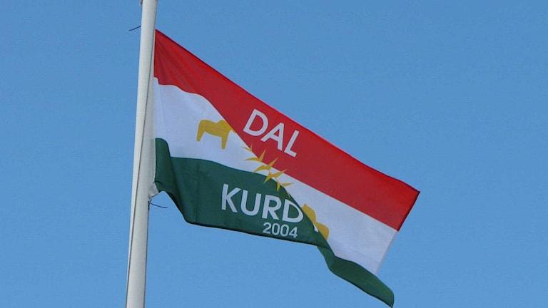 En bild på Dalkurds flagga