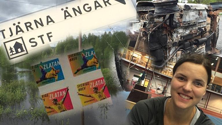 Lars Svan sammfattar veckan som gått i diktform.