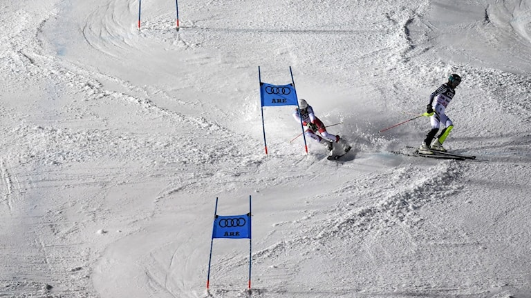 Anna Swenn Larsson körde ur i en slalomtävling