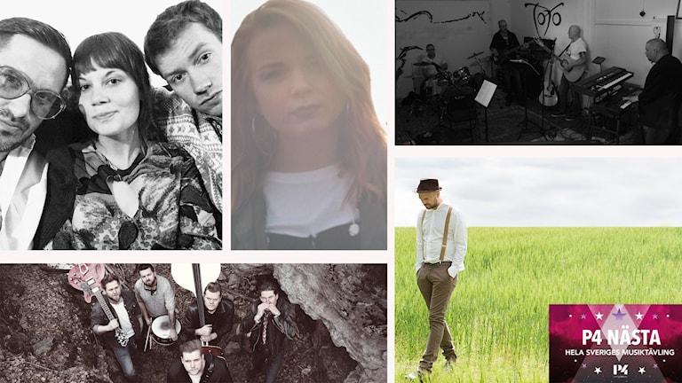 Kollage av bilder på de fem finalisterna