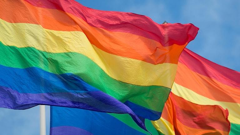 regnbågsfärgade flaggor