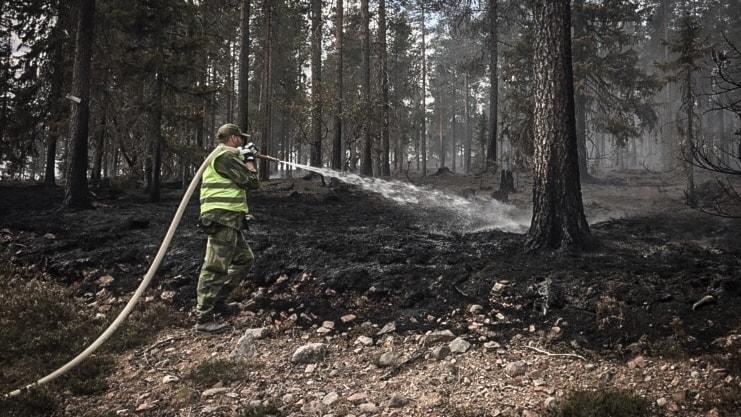 Person släcker skogsbrand på Älvdalens skjutfält.