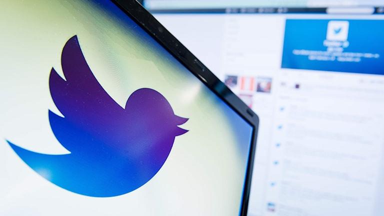 Dator med Twitter