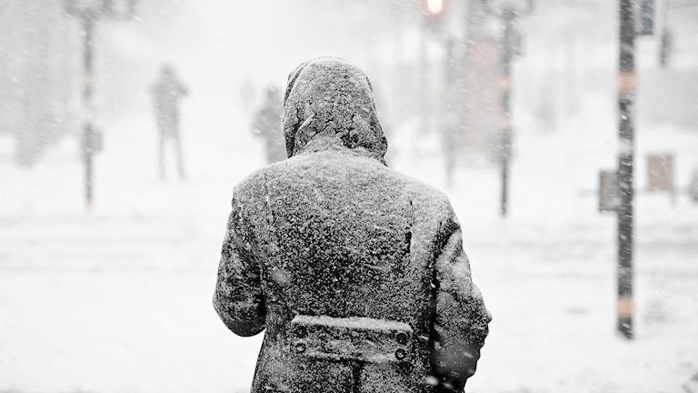 En person som är ute och går i ett snöväder.