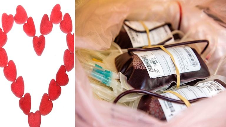 blod, blodpåsar, blodgivning, gelehjärtan, alla hjärtans dag, ge blod