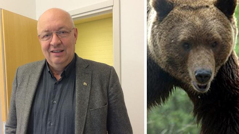 Ulf Berg, ordförande i Jägareförbundet och en björn